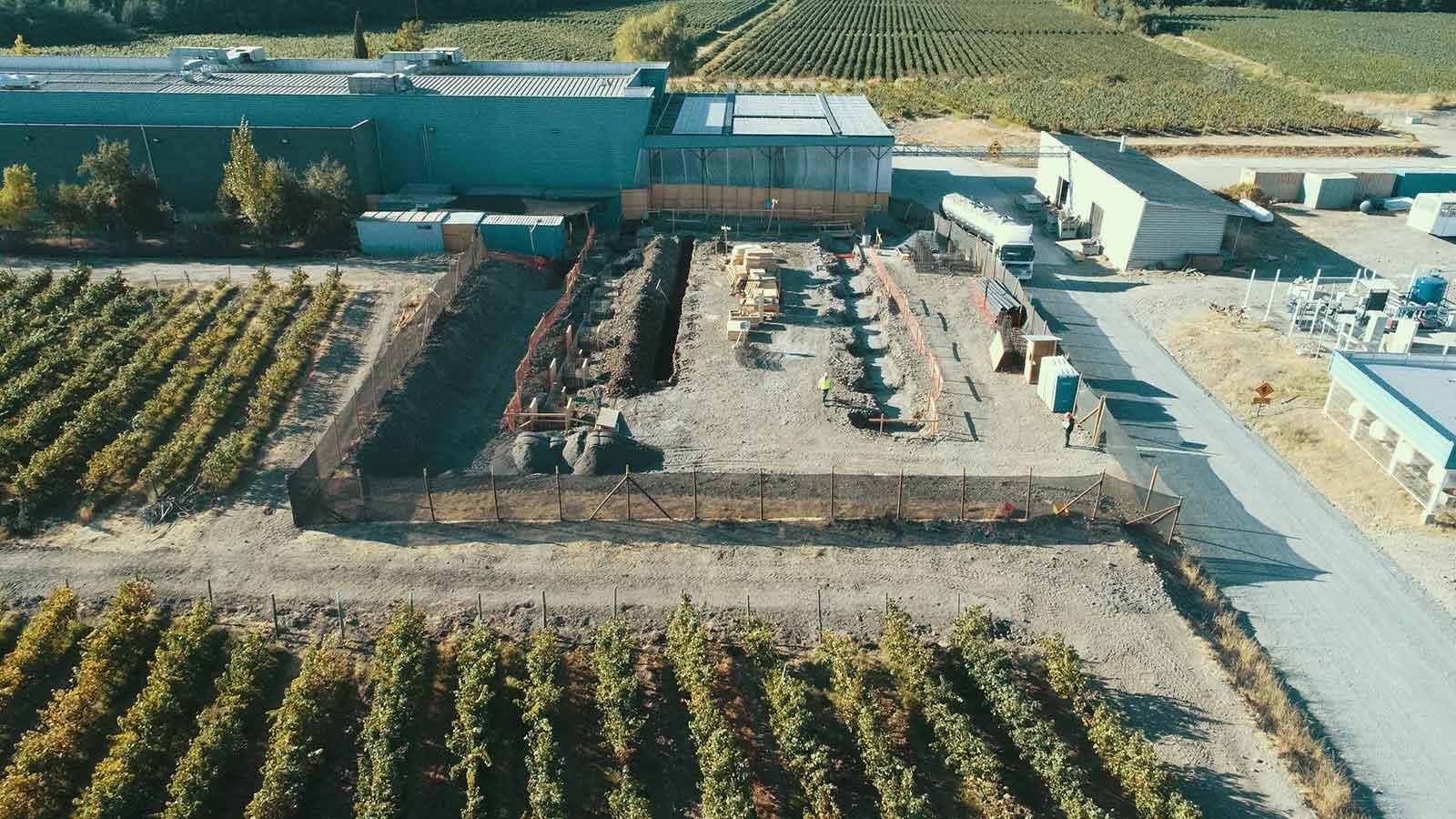 Bodega Pulmón y Fraccionamiento de Vinos